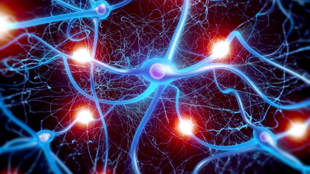 Российские учёные научили нейросеть сомневаться в правильности своих решений