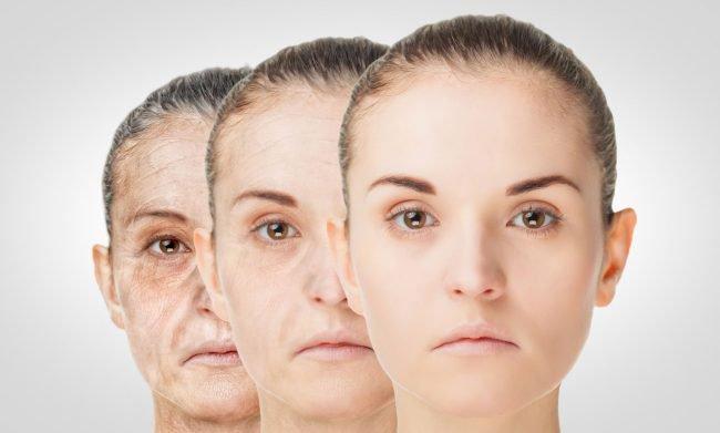 Ученые нашли способ удалить из организма стареющие клетки