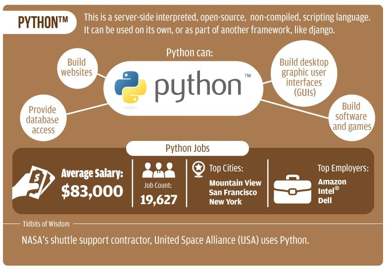 Какой язык программирования следует начать изучать начинающим программистам?