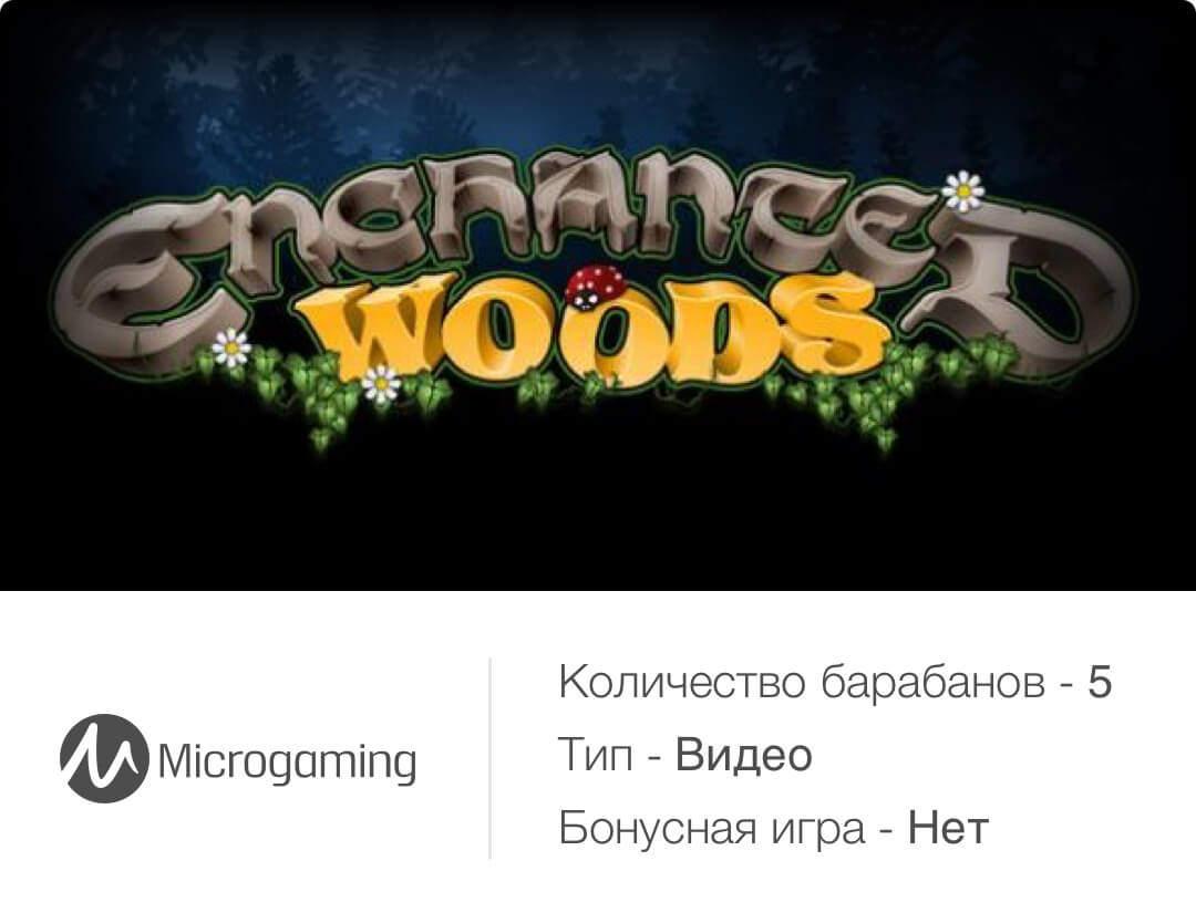 Основные характеристики игры Enchanted Woods из казино Вулкан Платинум