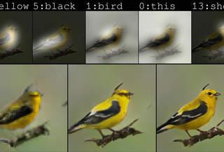 ИИ от Microsoft начал рисовать картинки по текстовым описаниям