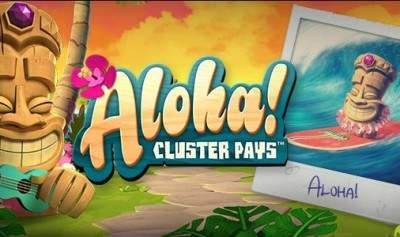 Вулкан Вегас казино: детали оформления автомата Aloha