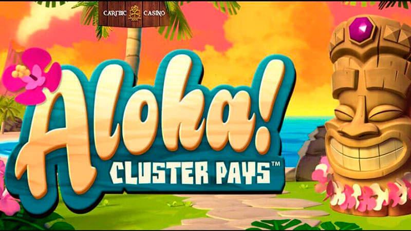 Тематика и особенности видеослота Aloha из казино Rox
