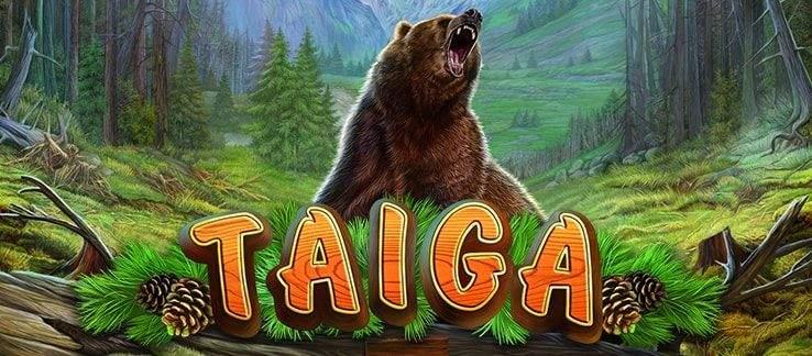 Ключевые черты автомата Taiga из популярного казино Pin Up