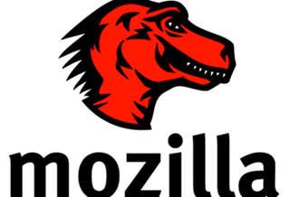 Финансовые итоги Mozilla за 2010 год