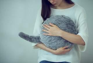 Подушка-кошка, которую вы всегда хотели, теперь доступна для предварительного заказа