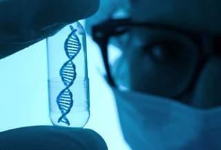 Ученые впервые «отключили» ген в эмбрионе человека
